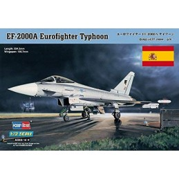 EUROFIGHTER EF2000 CON...